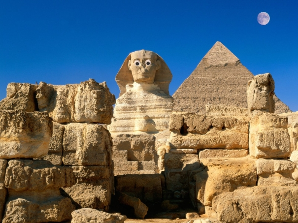 My sphinx has no nose. How does he smell? AWFUL!